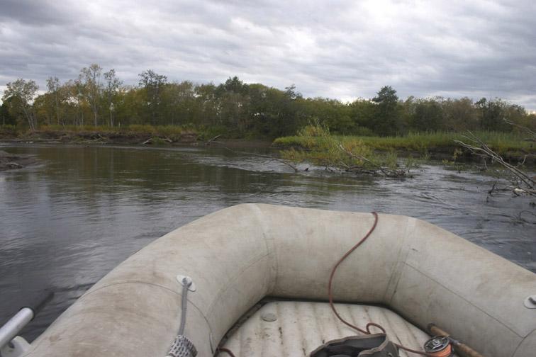 Alt-камчатка река радуга моторка