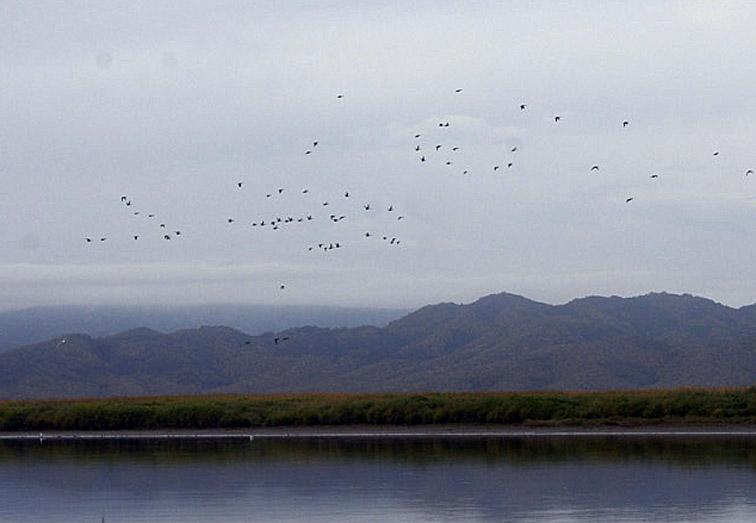 Alt-Kamchatka Azhabachie Lake