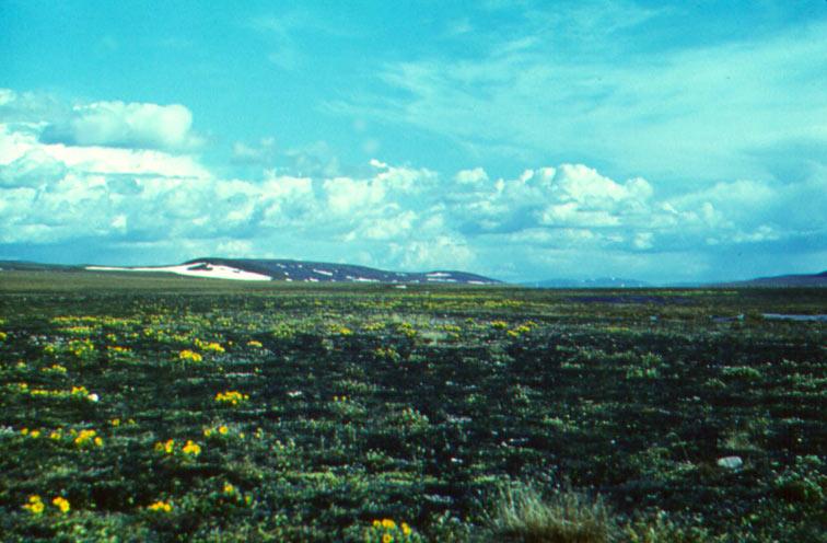 Alt-Chukotka Elgygytgyn Lake