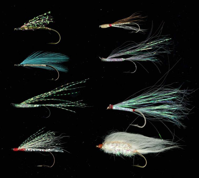 Alt-дальневосточные мухи малек лосося