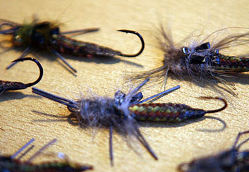 Alt-Far Eastern flies stonefly