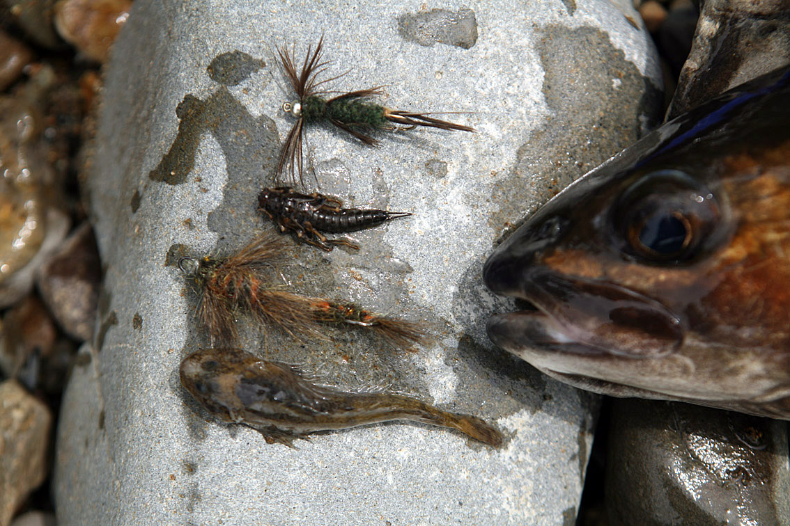 Alt-Far Eastern flies stonefly lenok sculpin