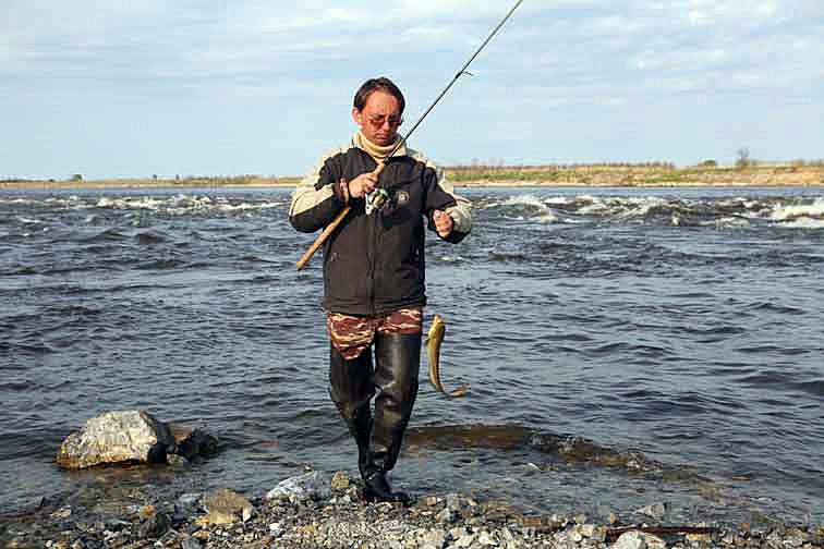Alt-Amur flyfishing catfish