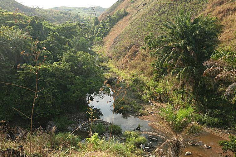 Alt-Africa Congo