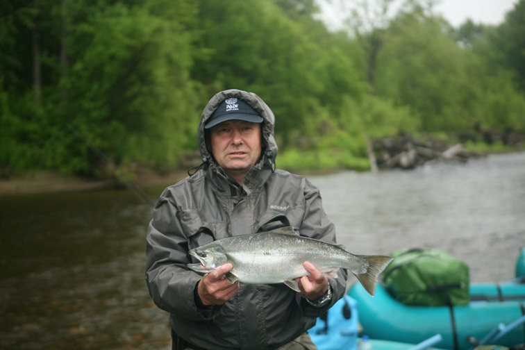 Alt-Sakhalin-Nabil-cherry salmon