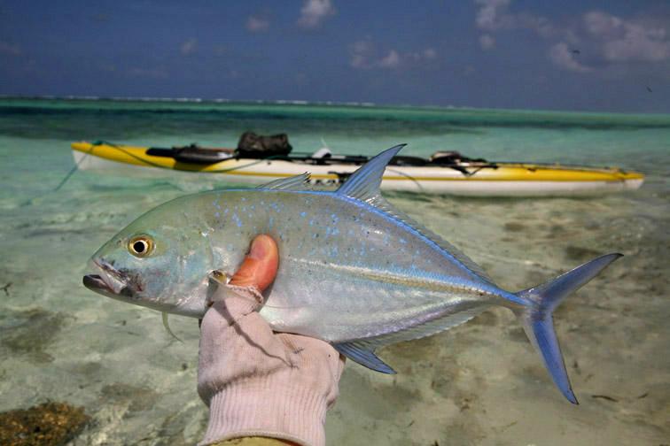 Alt-Сейшелы-Альфонс-рыбалка-нахлыст-каранкс