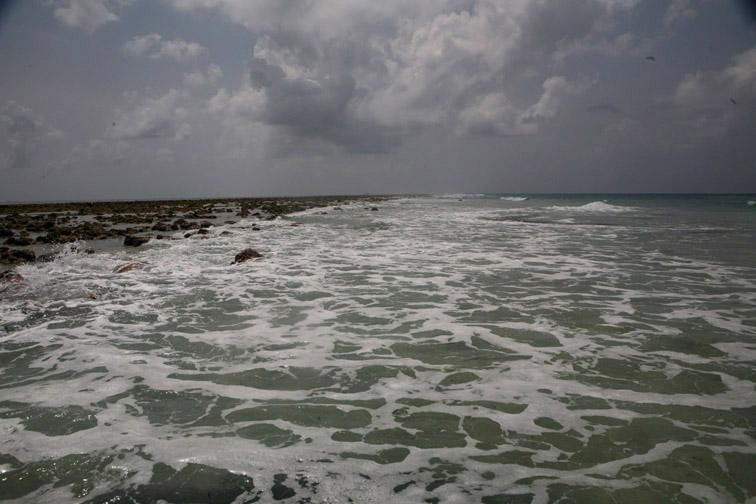 Alt-Seychelles-flyfishing-Alphonse-atoll