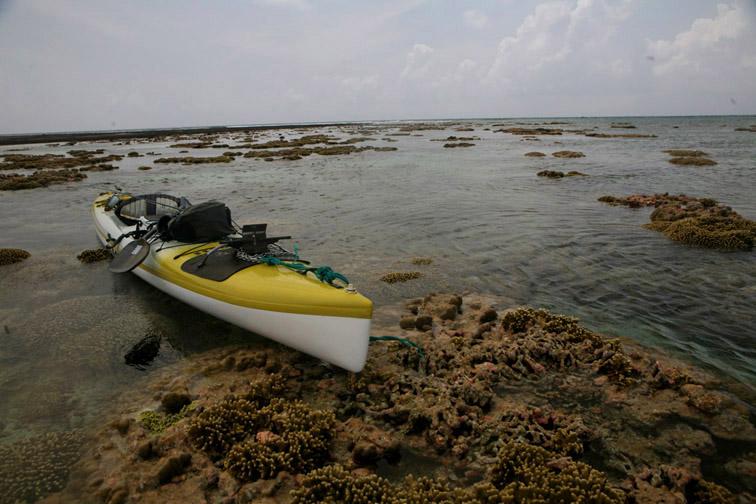 Alt-Seychelles-flyfishing-Alphonse-reef