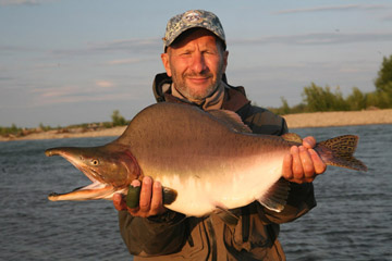 Alt-Sea of Okhotsk-Magadan-Ola-flyfishing-chum-salmon-pink-humpback