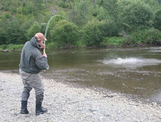 Alt-Amur-Bichi-taimen-flyfishing
