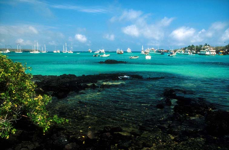 Alt-Galapagos, Academy Bay, Santa Cruz Island