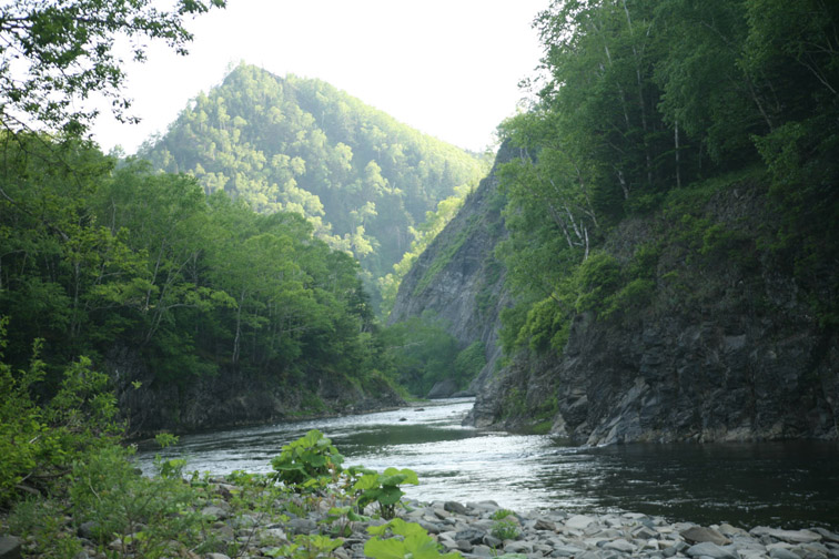 Alt-Sakhalin-Agnevo-canyon