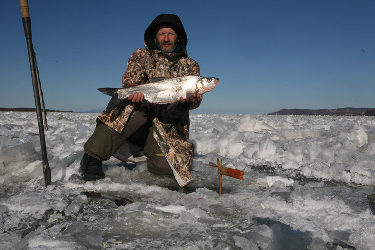 Alt-Amur-icefishing-skygazer