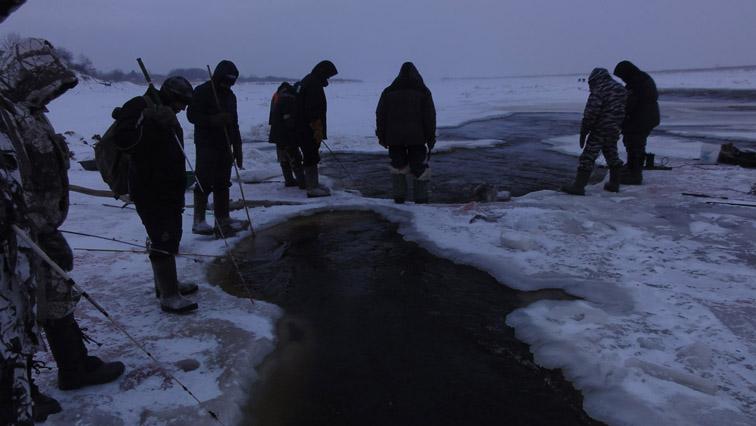 Alt-Amur-Khabarovsk-lamprey