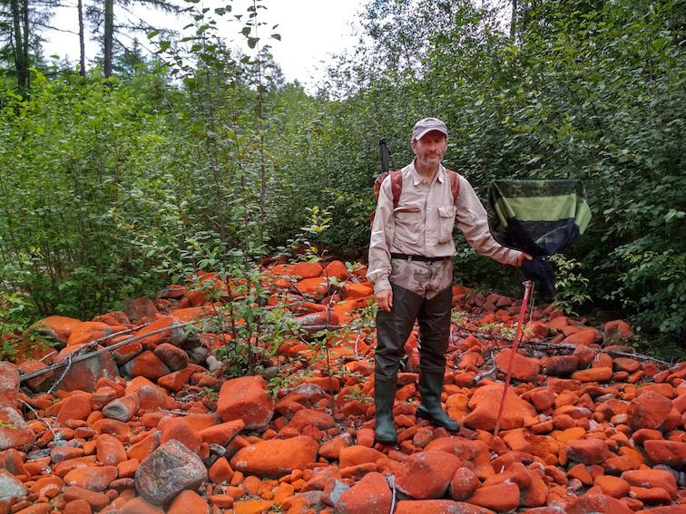 Alt-Urmi-Amur-red lichens