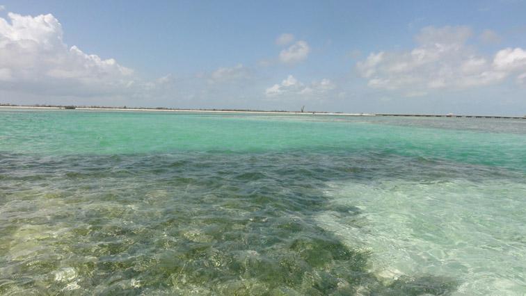 Alt-Cuba-Cayo Coco-Cayo Guillermo-fishing-flyfishing