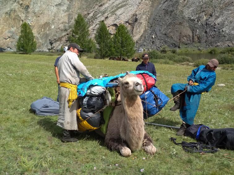 Alt-Mongolia-Selenge-Delger-Muren-rafting-flyfishing-camels