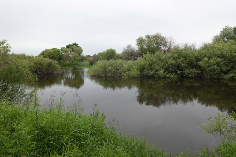 Alt-Amur-Ussuri-Sheremetyevsky nature park